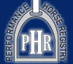 Performance-Horse