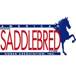 Saddlebred1