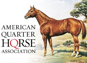 aqha_logo_horse.ashx_
