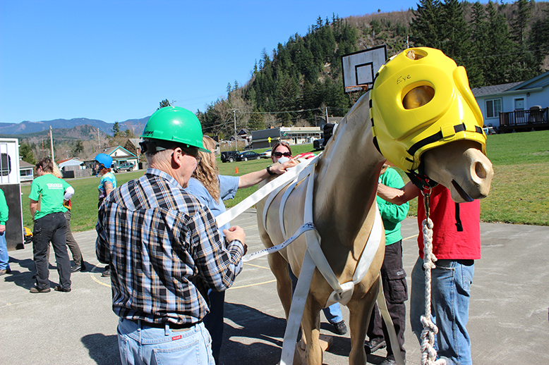 We practice and train throughout the year to make rescue safe and effective for humans and horses. We're always looking for volunteers!