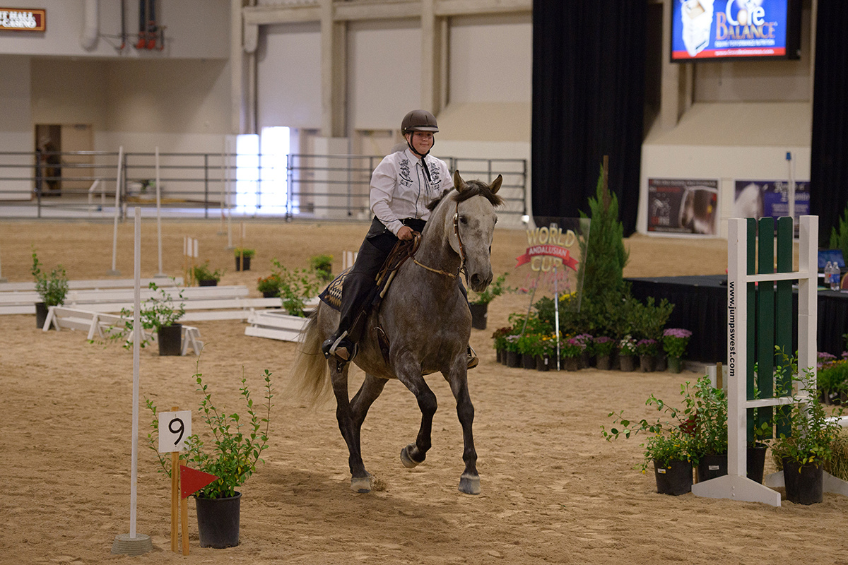 Oregon horse competing at a 2014 WE show in Las Vegas: Speed Trial