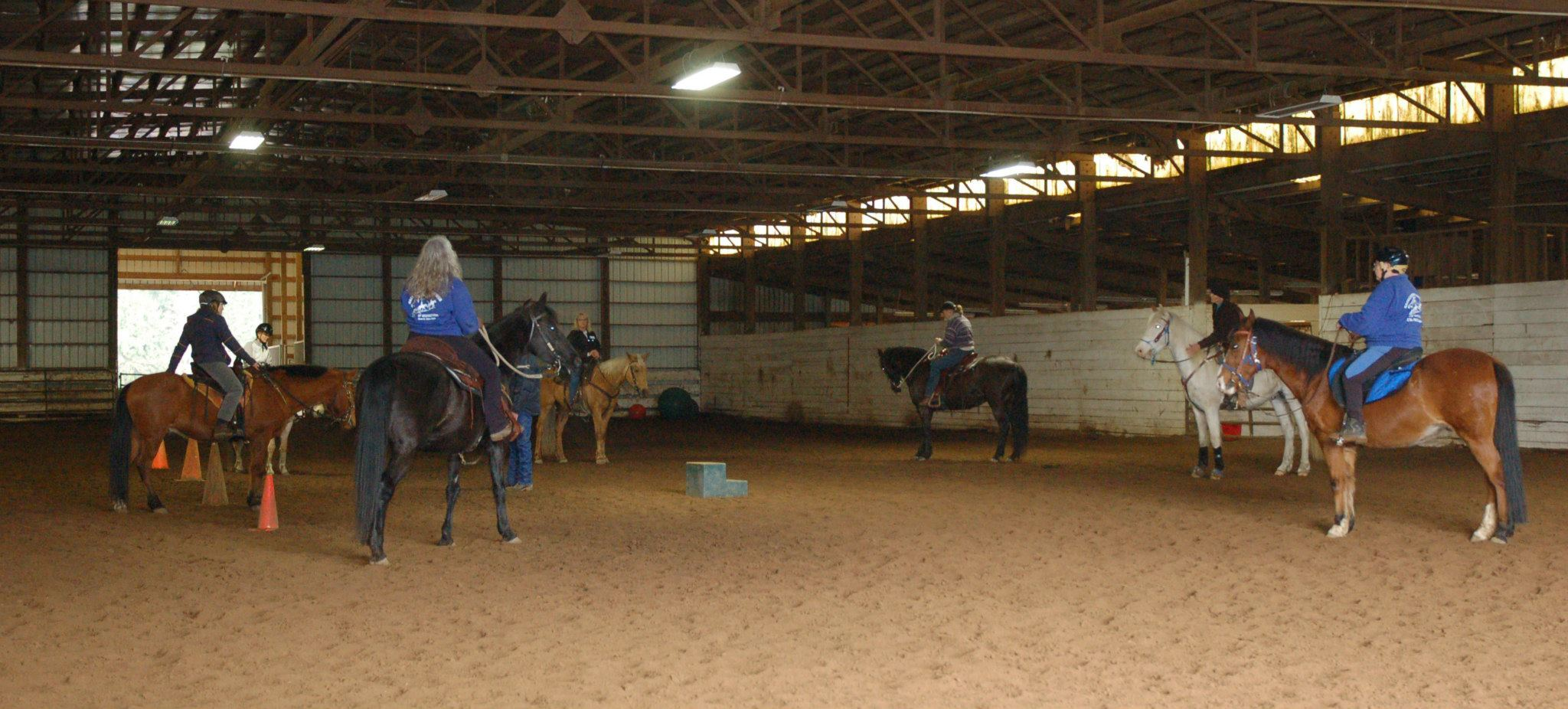 Getting started under saddle after ground work. Relaxed horses ready to learn more.  At Ridgefield Gaited Horse clinic.