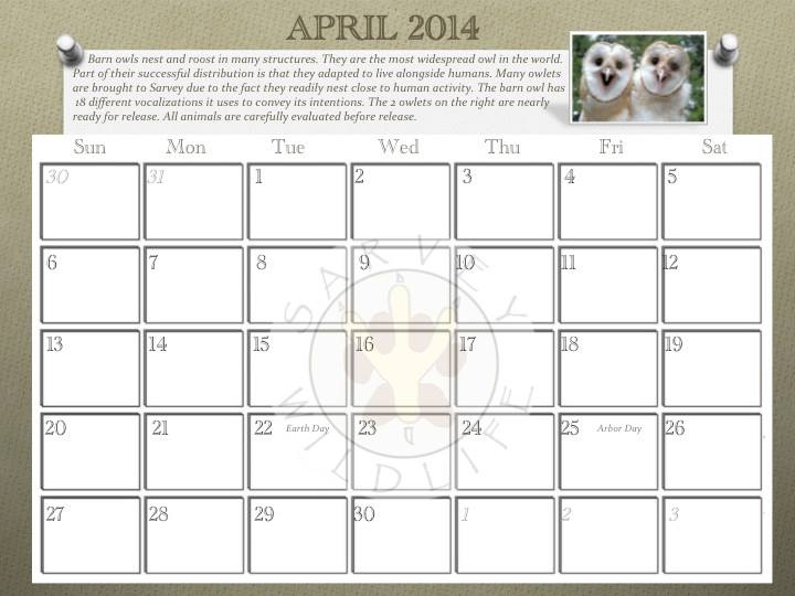Our calendar spotlights a different education animal each month. Sample from inside. Lots of room to actually use this to note appointments, birthdays, and other important dates. Plus, stories and information about each species. Proceeds from the calendar help us help more animals.