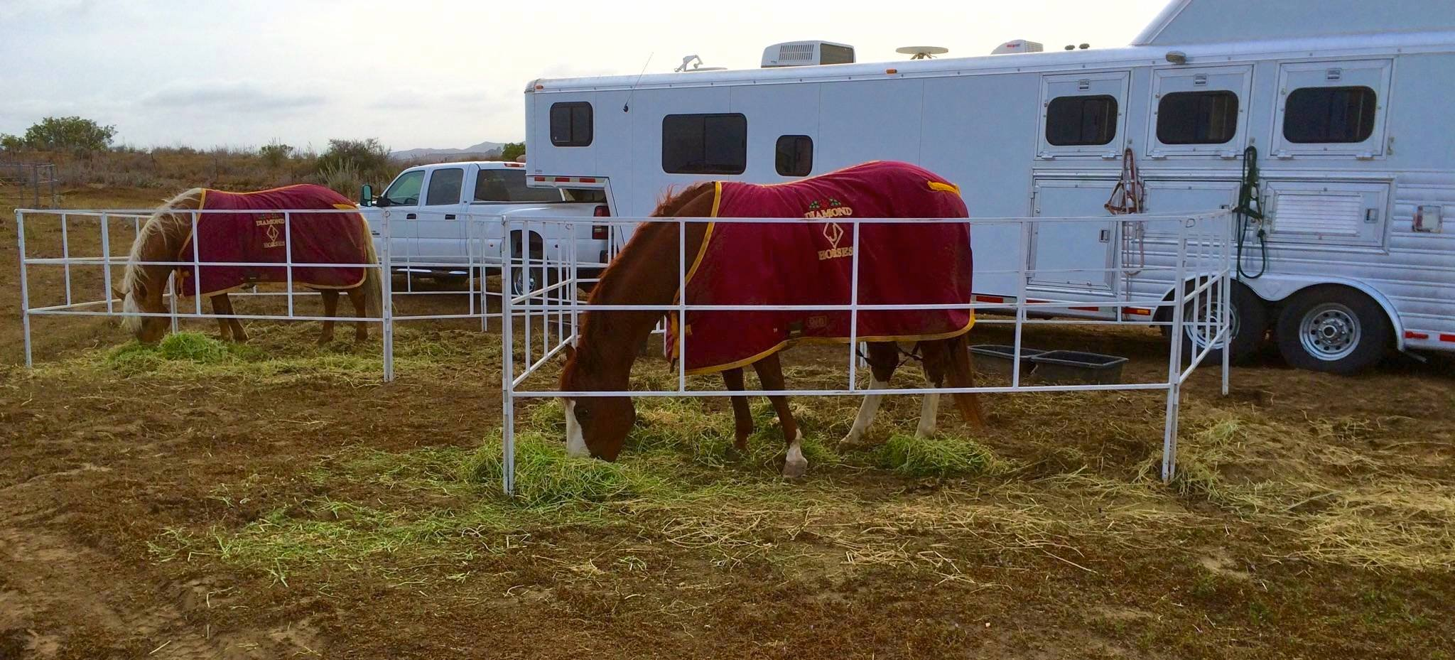 Corrals 2 Go! are the perfect travel corral panels for horsemen and women concerned with the safety of their equine companions. Hand made-in-America of 3/4″ square steel tubing, Corrals 2 Go panels are safe, simple, solid and secure.