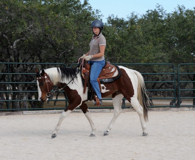 Connected Riding is relevant in ALL disciplines, including Western. Here a student in Texas demonstrates the beginning of soft Connection using her newly learned Connected tools.