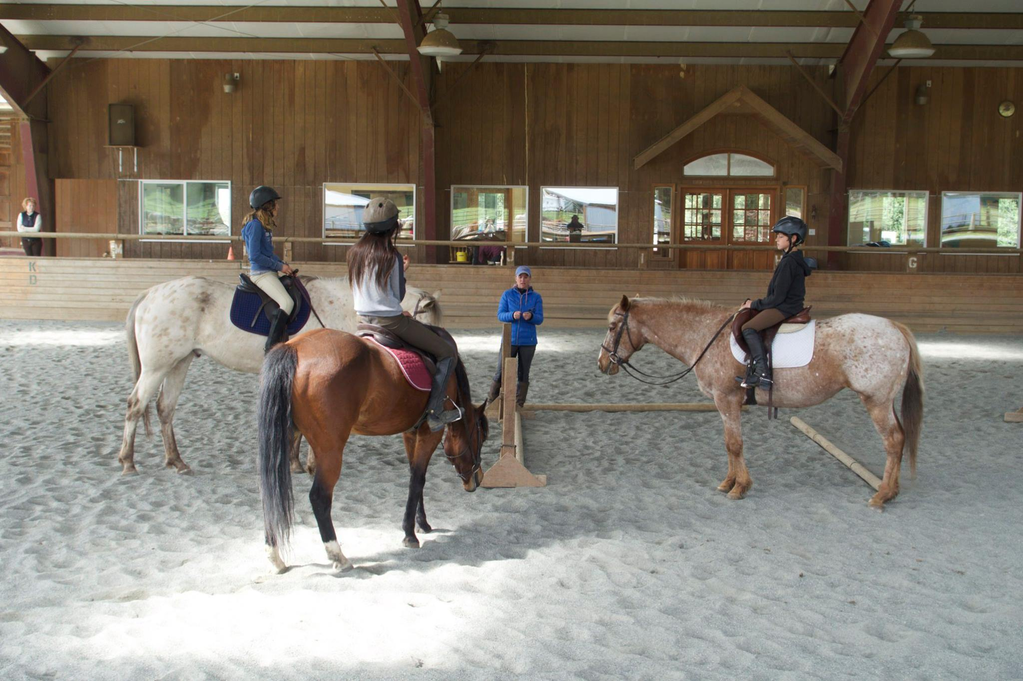Freedom Farm is a natural horsemanship-based training and boarding facility, offering youth horsemanship programs as well as adult classes and lessons.