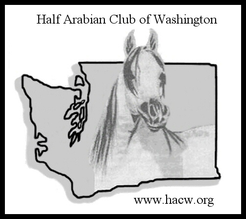 We are working to promote both Purebred and Part Bred  Arabian horse in Washington State.
