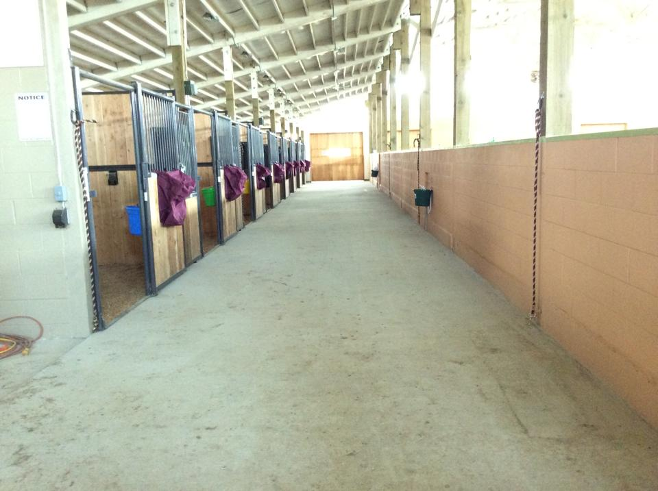North side stalls