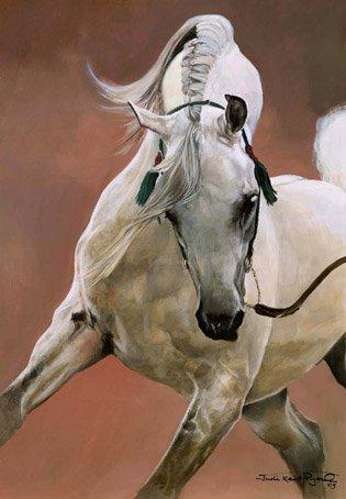 Northwest Washington Arabian Horse Association