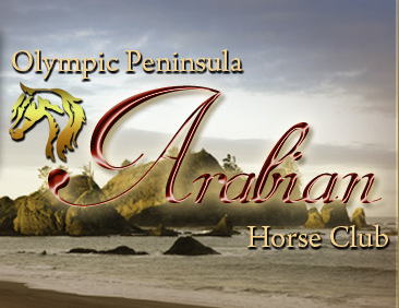Our members are dedicated to the welfare, breeding, showing, and riding of both Arabians and Half Arabians in the beautiful Pacific Northwest.