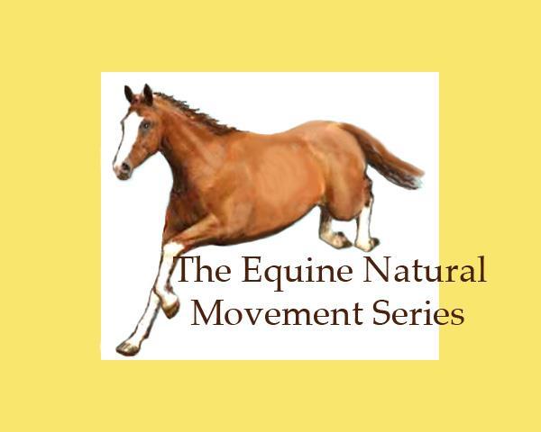 Equine-Movement
