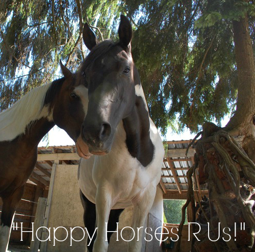Happy-Horses-R-Us1