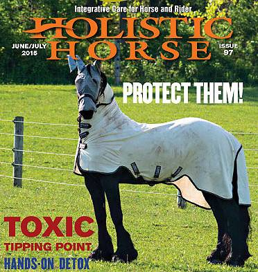 Hol-Horse