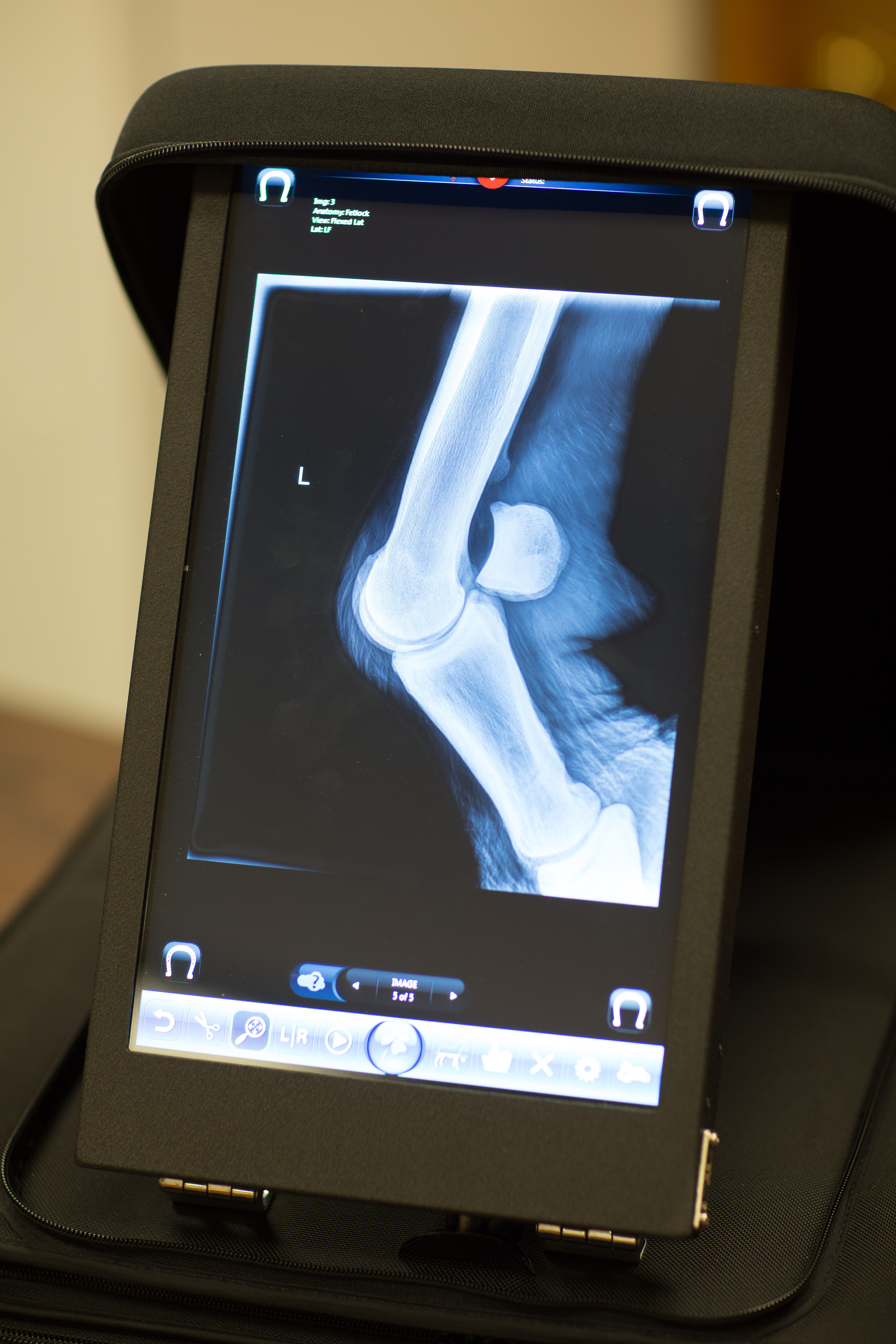 Our Cuattro Digital Radiography