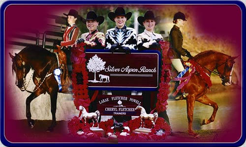 Silver Aspen Ranch specializes in training and showing Arabian and Half-Arabian horses in reining, western pleasure and hunter pleasure.