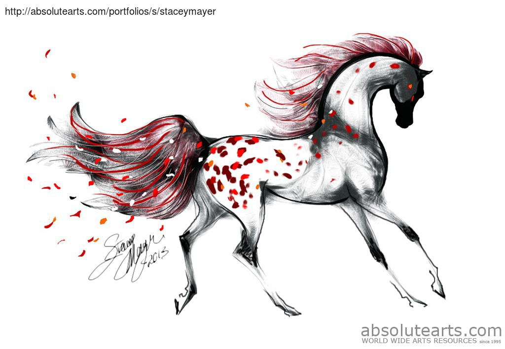 'Appaloosa Rose Petals', 2013 – Digital Drawing