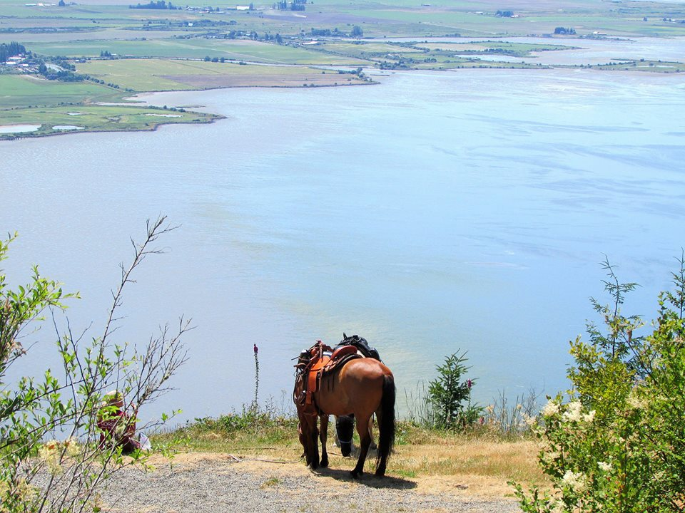 Skagit County offers some rather nice trail views.  Be sure to bring your camera.