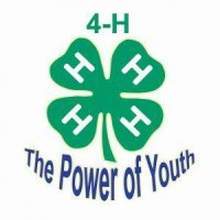 power of 4-h
