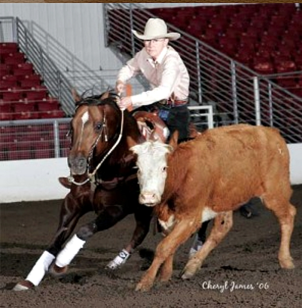At Double S Quarter Horses Sue and Tom use their combined experience to help each client identify individual goals and outline a program that fits their needs.  Every horse in the program receives the kind of specialized training that will carry it to success throughout their equine careers.