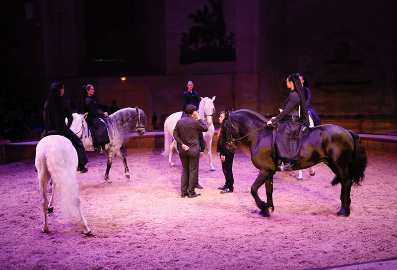 A show that leads to you in an adventure unforgettable equestrian where the horses and their other companions, you will discover the mysteries of the earth corse.