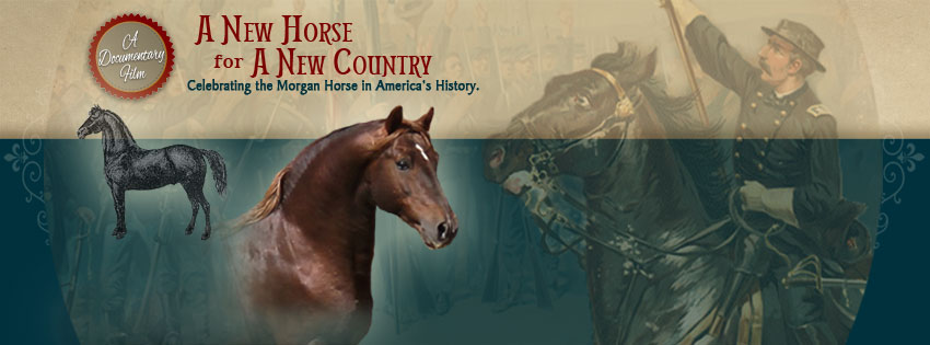 A documentary film celebrating the Morgan Horse in America's history.