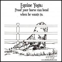 Equine Yoga Banner Ad