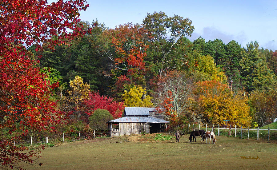 horse-and-barn-in-the-fall-3-duane-mccullough