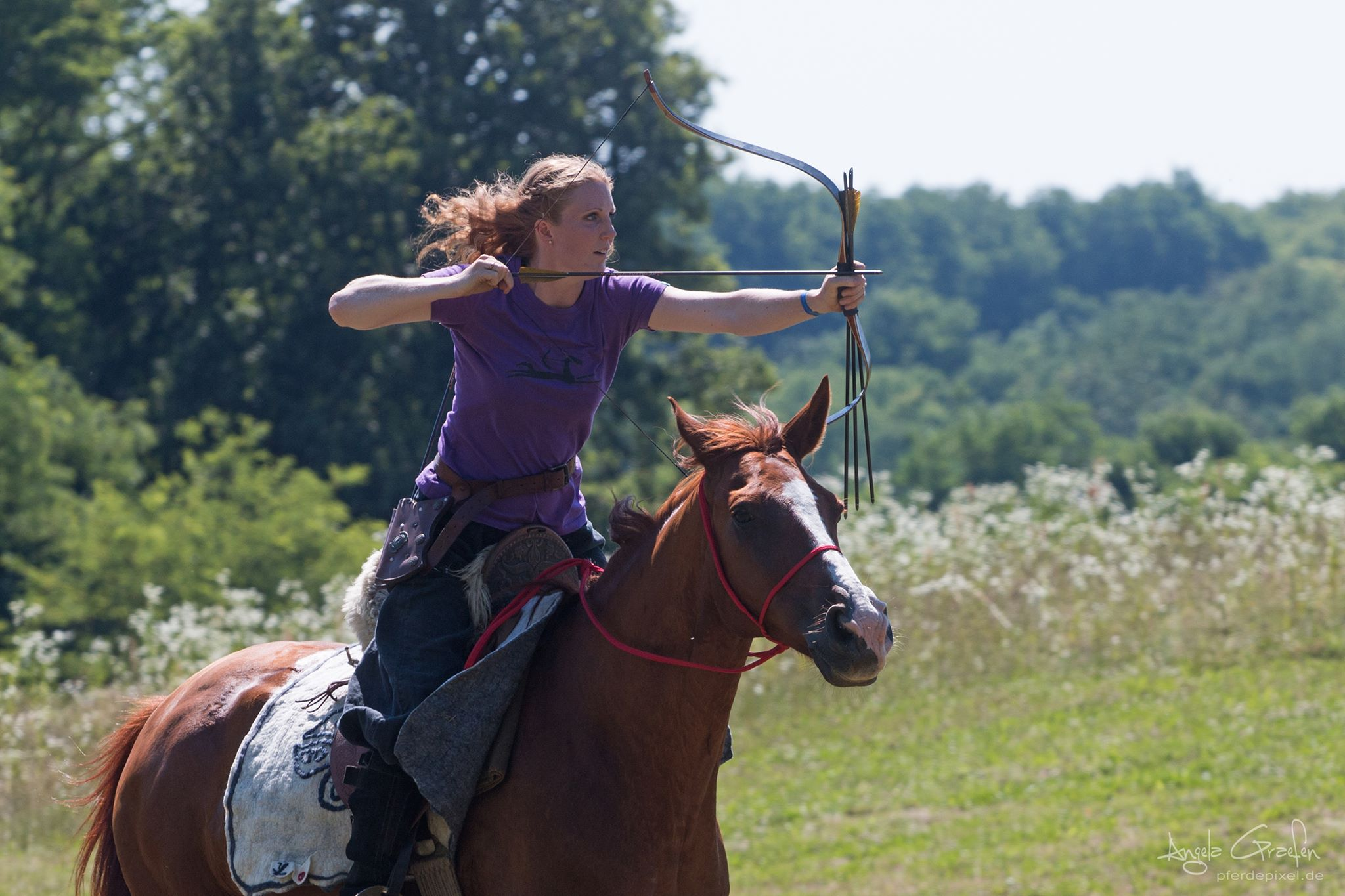 Mounted Archery, Horse Training, Riding Lessons, and Archery Lessons!