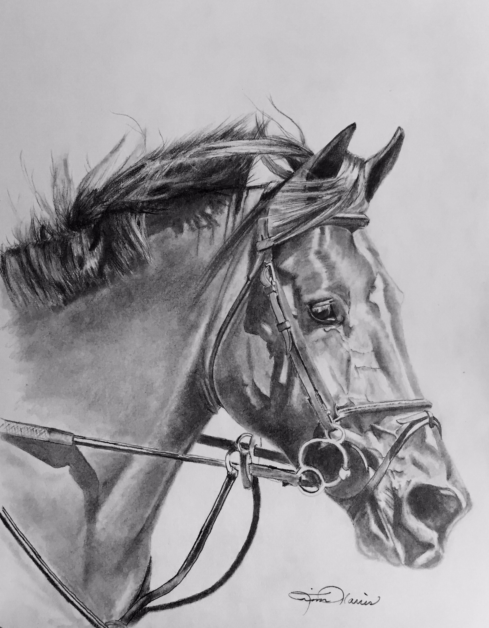 Custom graphite drawings of any discipline will be created for you and ready for framing