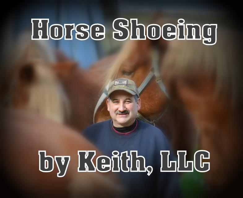 Keith brings to you years of experience.  Providing quality farrier service and reasonable rates with hot, cold, and corrective shoeing. He is dedicated to continuous education for the well being of the horse.