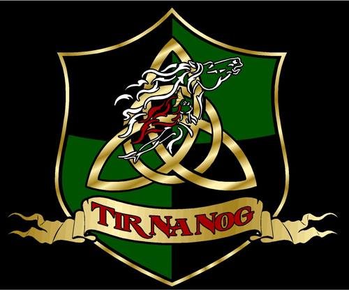 Tir Na Nog Farrier Services offers 30  years of experience and knowledge.  We don't just trim/shoe to the foot, we shoe to the conformation of the whole horse.  Offering punctual and honest service.