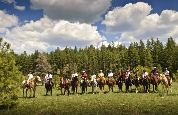Western Sky Horsemanship is dedicated to developing a willing partnership with our students and horses, through trust, communication and feel. Come see what the fun is all about, build your confidence and skills in a safe environment with quality and talented horses and instructors!
