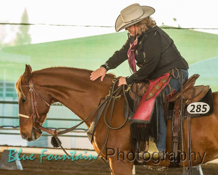 Buccaneer tries so hard to please, he's not perfect (close though :-), none of us are, he's patient, kind and full of personality. I am fortunate to have the pleasure of having such a wonderful wiling horse. -Dale