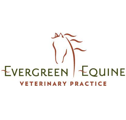 At Evergreen Equine our team of equine veterinarians has developed a reputation for rapid response, compassionate care, advanced equine diagnostics, and a passion for preventative equine medicine.