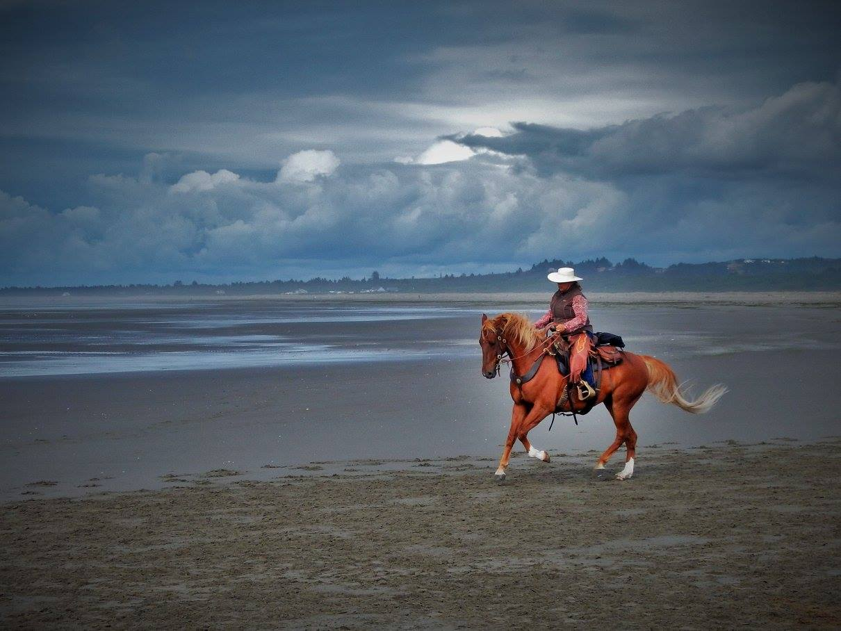 Dale enjoys the simplicity and 'no frills' just simply great horsemanship with quality riding and of course treating the horse with respect and honoring that relationship she has with her horses.  Shown is Dale and Far Field Buccaneer dancing at the beach.