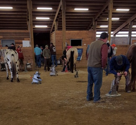 Well the clinic is rocking! We have some great cases to work on and learn from! And the new xray is awesome.  Enjoy the opportunity to further our education to keep and maintain a healthy horse.  And expand our working relationship with other Farriers and Veterinarians.