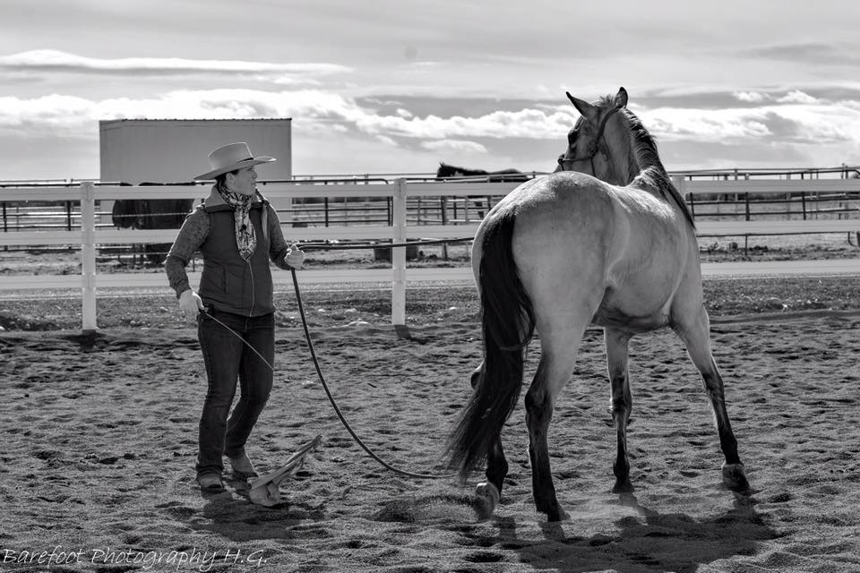 When you catch on to the idea of good horsemanship, it's like slowly turning on the light for your horse. When you adjust; the horse will adjust with you. Then you go together..  I saw some pretty amazing things happen at yesterday's Foundation clinic. Working the horses from the inside out. I hope everyone caught on to the ideas I've learned from Buck, Ray, and Tom.