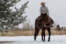 We are a full service training facility which teaches on a foundation of horsemanship. Offering riding lessons, horse training, colt starting, horse show preparation, equine sales, and equine consignment program.