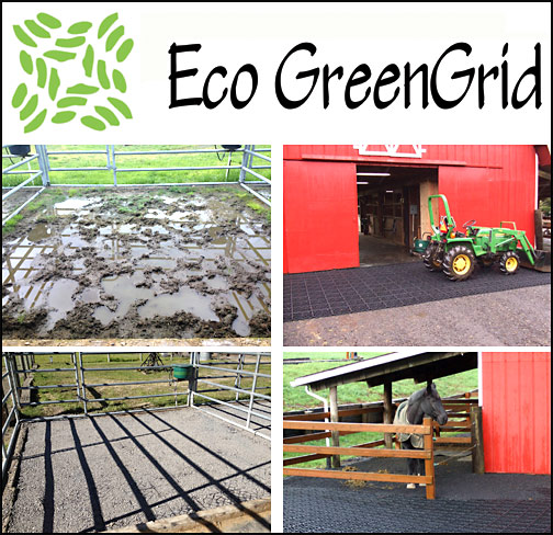 Eco GreenGrid is a ground stabilizing mud control system made in USA. It works great in equestrian, landscape, parking areas projects and that's just the start.  Most anywhere that you need better footing, Eco GreenGrid is your answer.