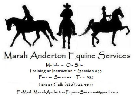 I specialize in affordable training and lessons in multiple riding styles and breeds. Offering Youth and Amateur pleasure and show training in Saddleseat, Driving, Huntseat, Western, Trail,  Halter, Showmanship and Arabian Halter.