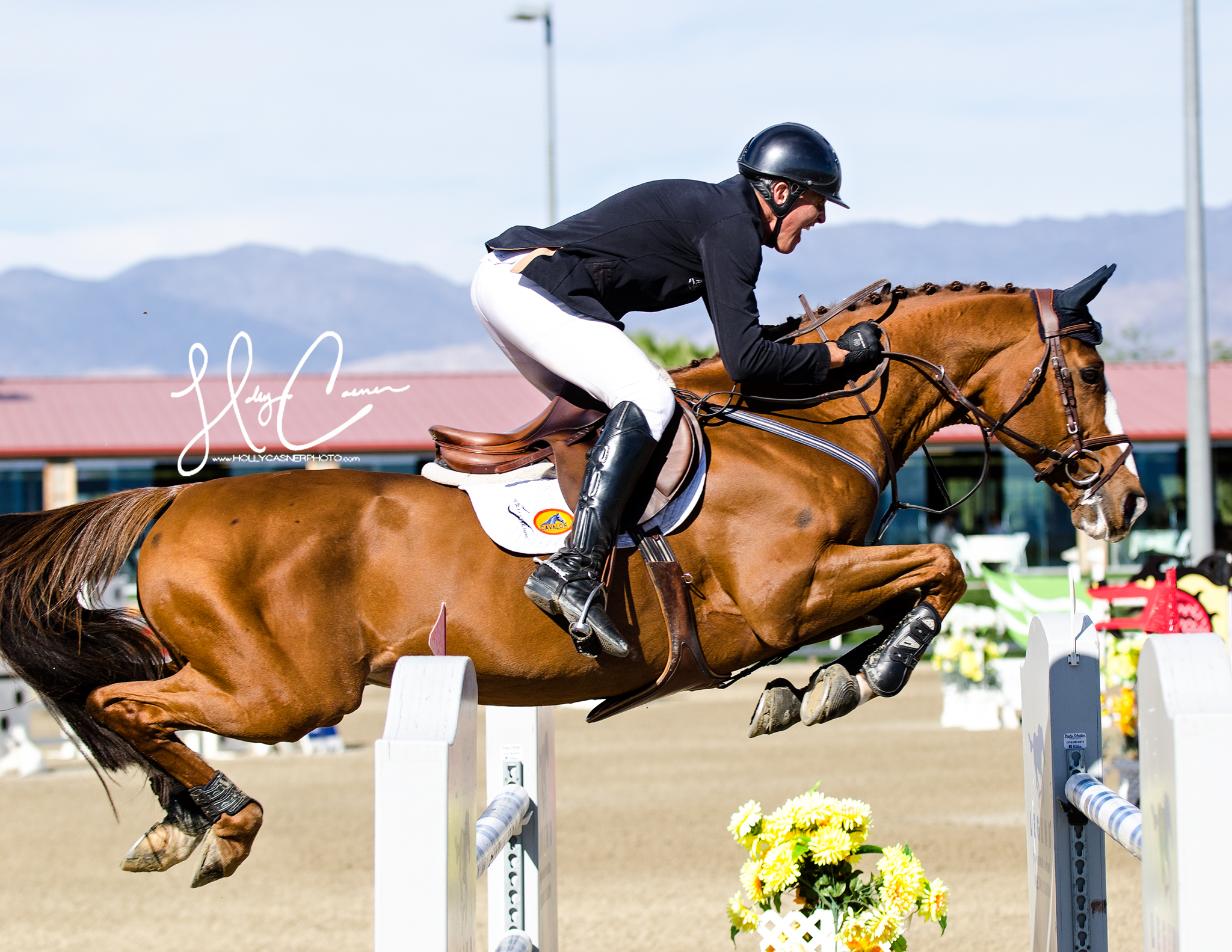 Holly Casner, The Equestrian Photographer – Horse Show Photography – Jumpers