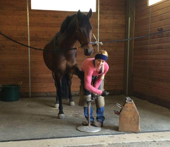 Shadow Mountain Horseshoeing is here to meet the needs of your horse and you.