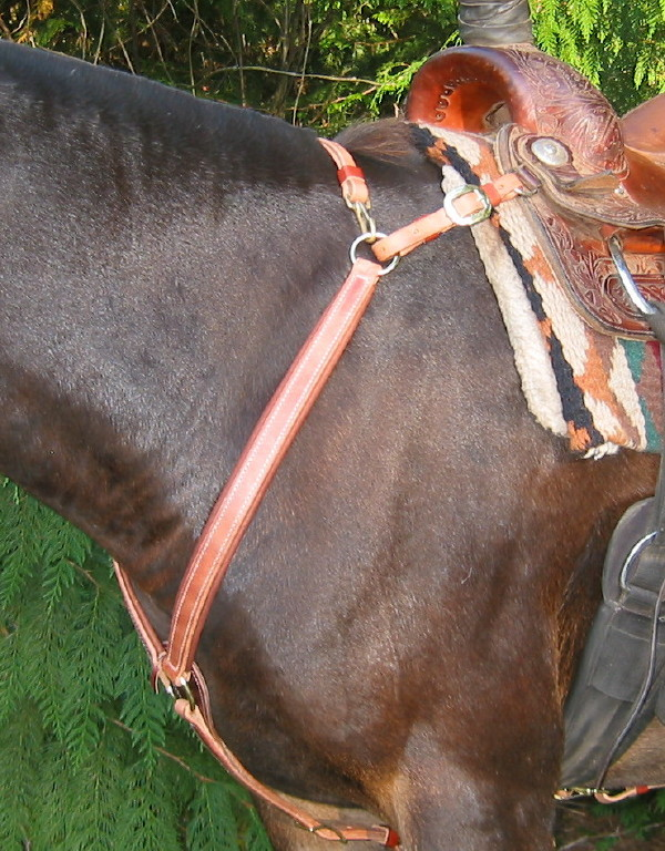 Our trail breast collar has become our most popular style for the great fit it provides on a variety of animals. It works especially well on mules because you can adjust the center ring low enough to clear the windpipe yet keep the side pieces from riding too low across the shoulder. It also works well on gaited animals for freeing up the shoulder.