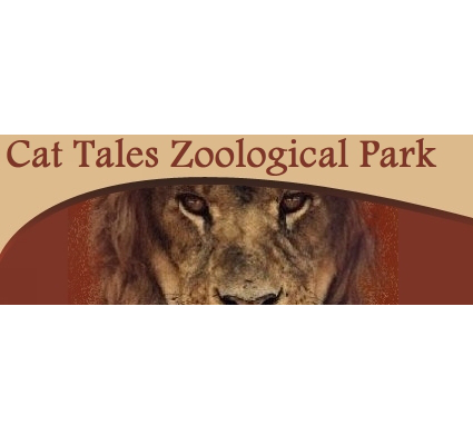 Cat Tales Zoological Park was founded with the purpose of rescuing and supporting endangered felines. Over the years the park and the mission has grown to help dozens of animals.