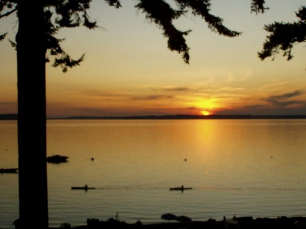 Camano Island sits in the Olympic Sun Belt and it only receives 17-20 inches of rain annually.