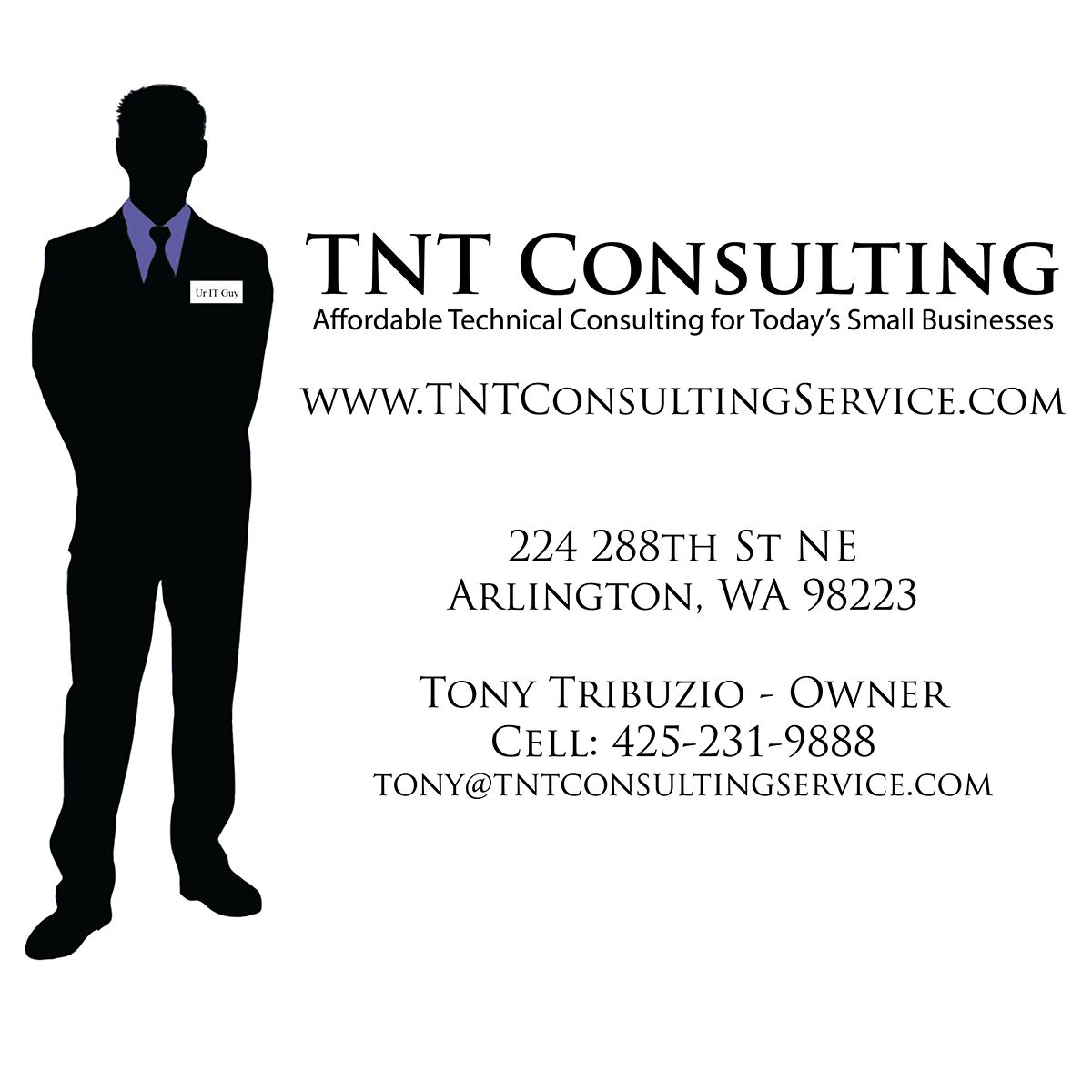 TNT-Consulting-Logo-01