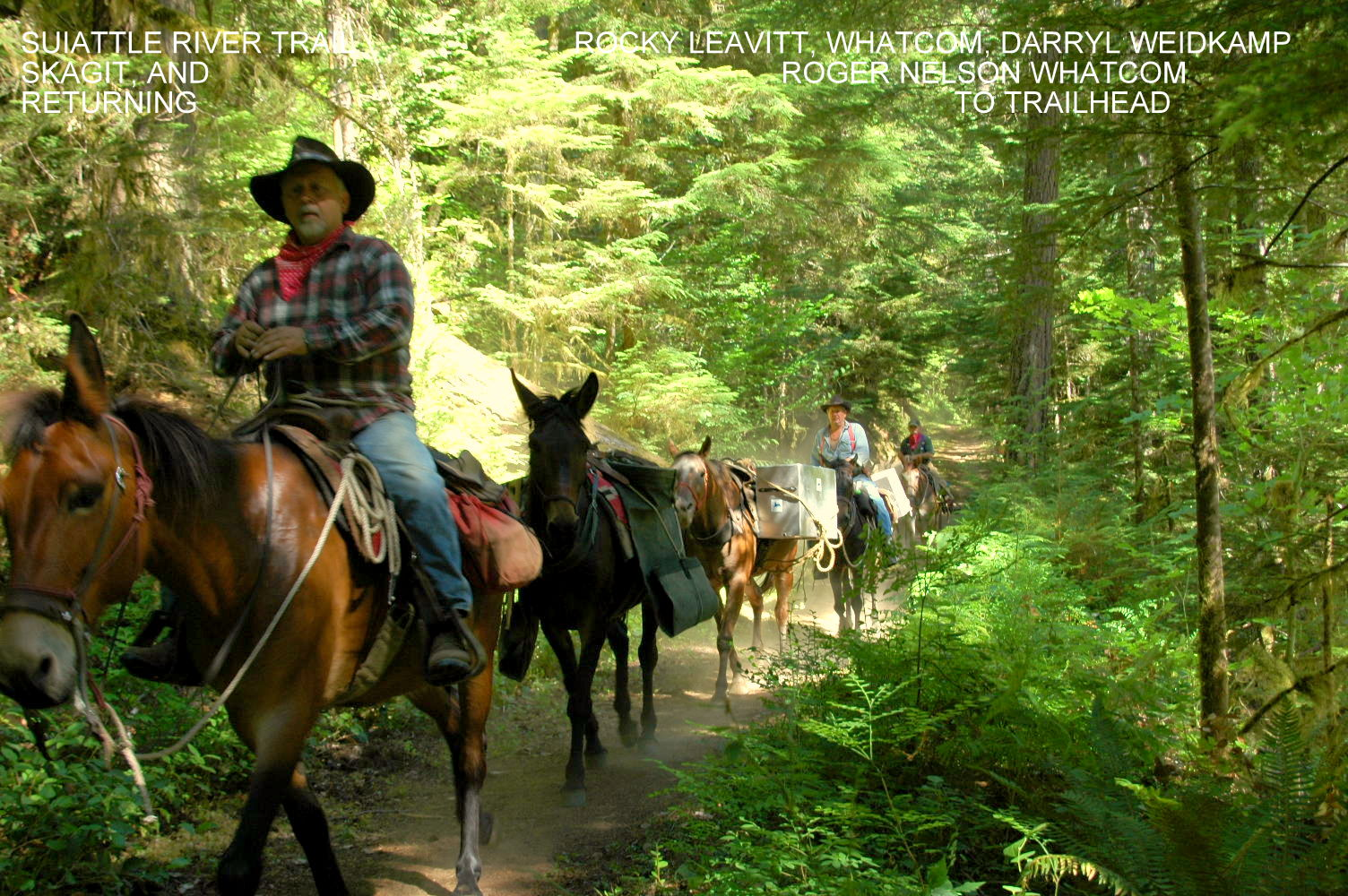 Pack Train for Trail Work