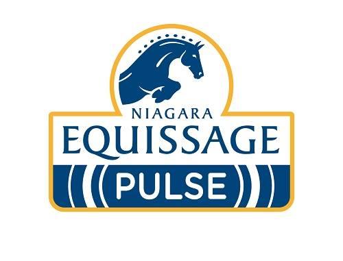equissage3