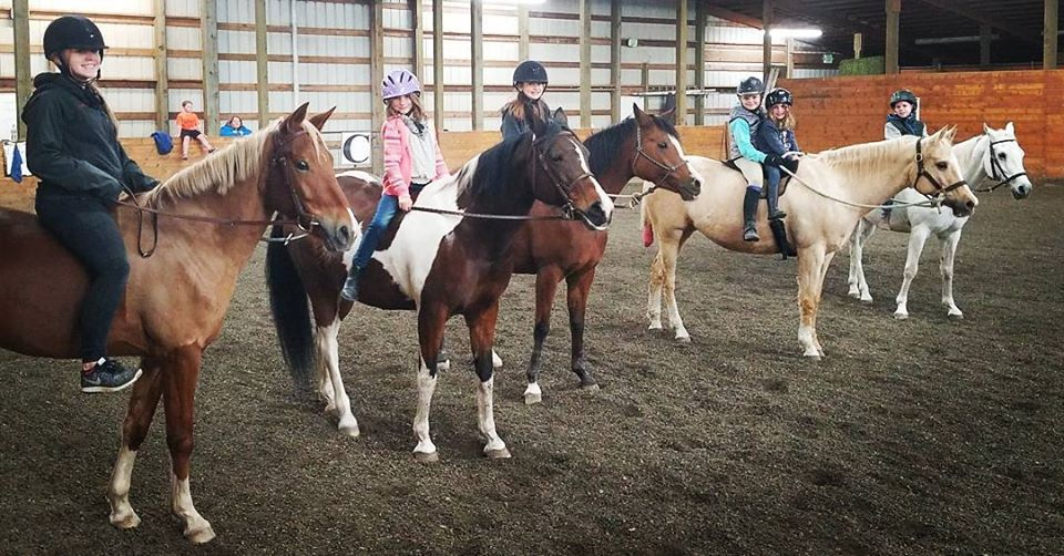 Horse learning for young equestrians! Ground work, horsemanship classes, riding lessons, vaulting for confidence. Use our horses or bring your own for a boost in training, leadership skills, and confidence and respect building for both the kid and the horse/pony!