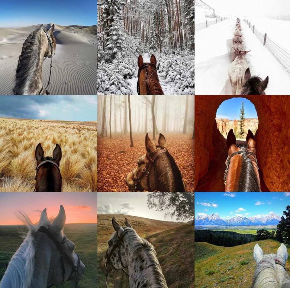Are you one who snaps photos while riding? Share your photos with Life Between The Ears! Do you enjoy viewing photos from around the world? View the images that you will find on Life Between The Ears.
